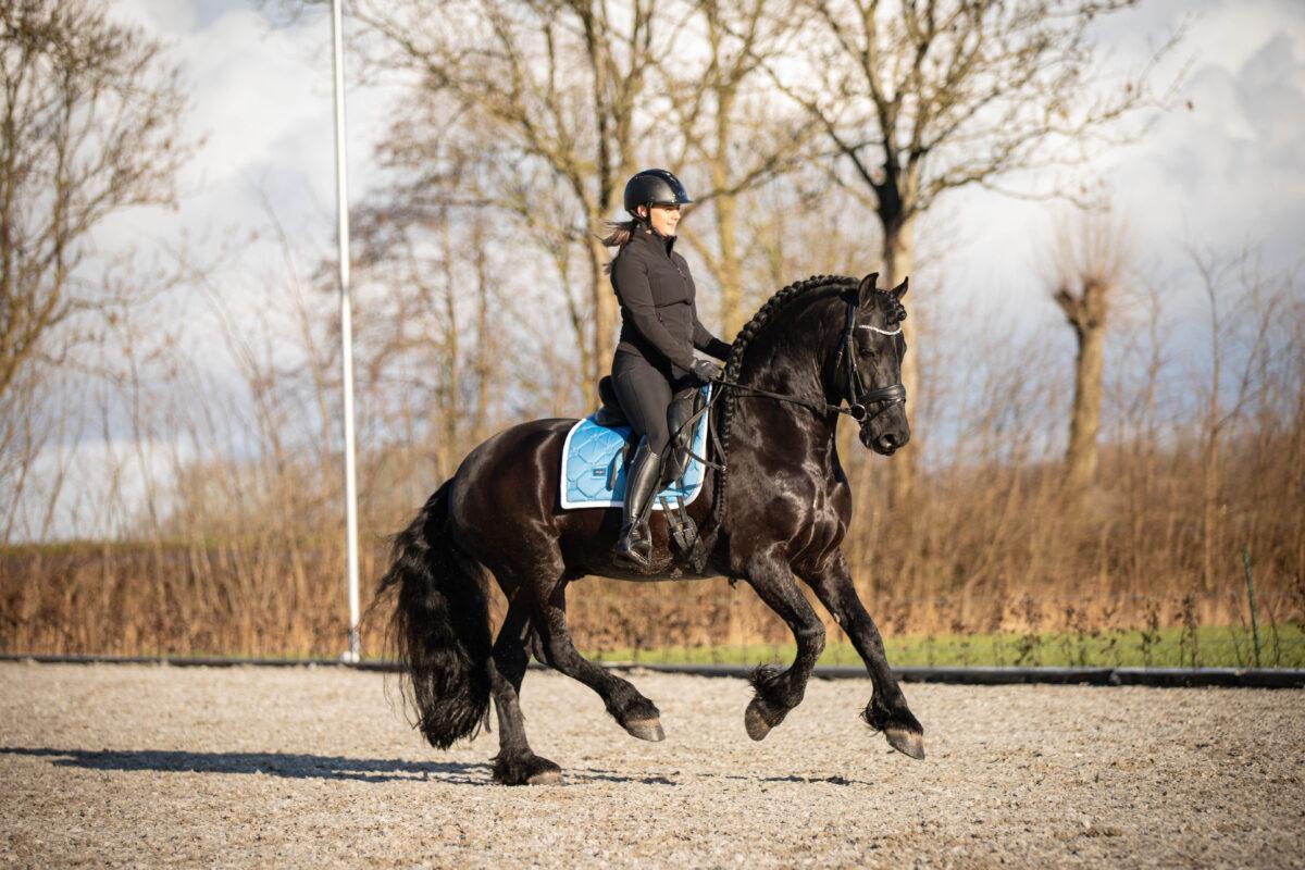 ER Fotografie, rijfoto paard 11