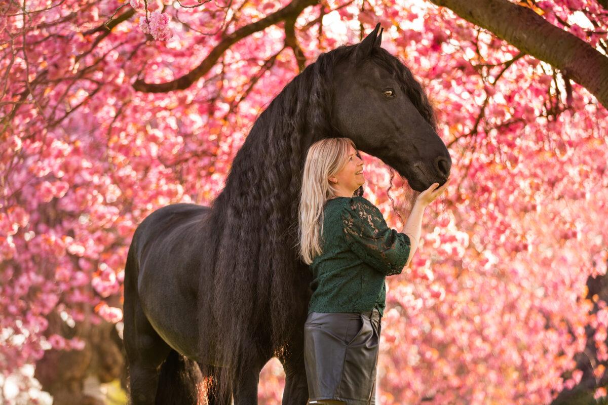 Bloesemfotografie paarden