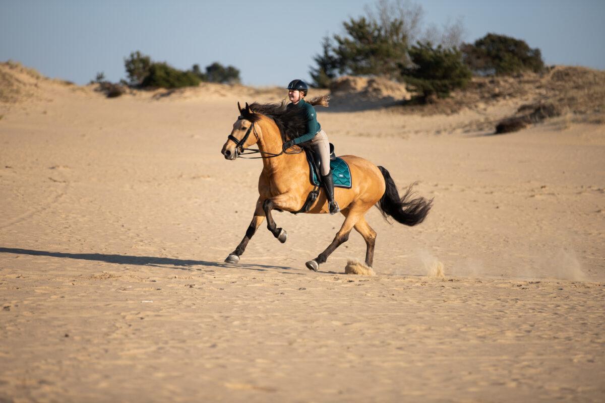 Rijfoto zandvlakte paardenfotograaf